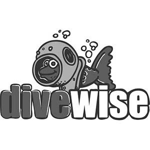Divewise Malta Logo