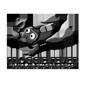 Froggie Fever cc Logo