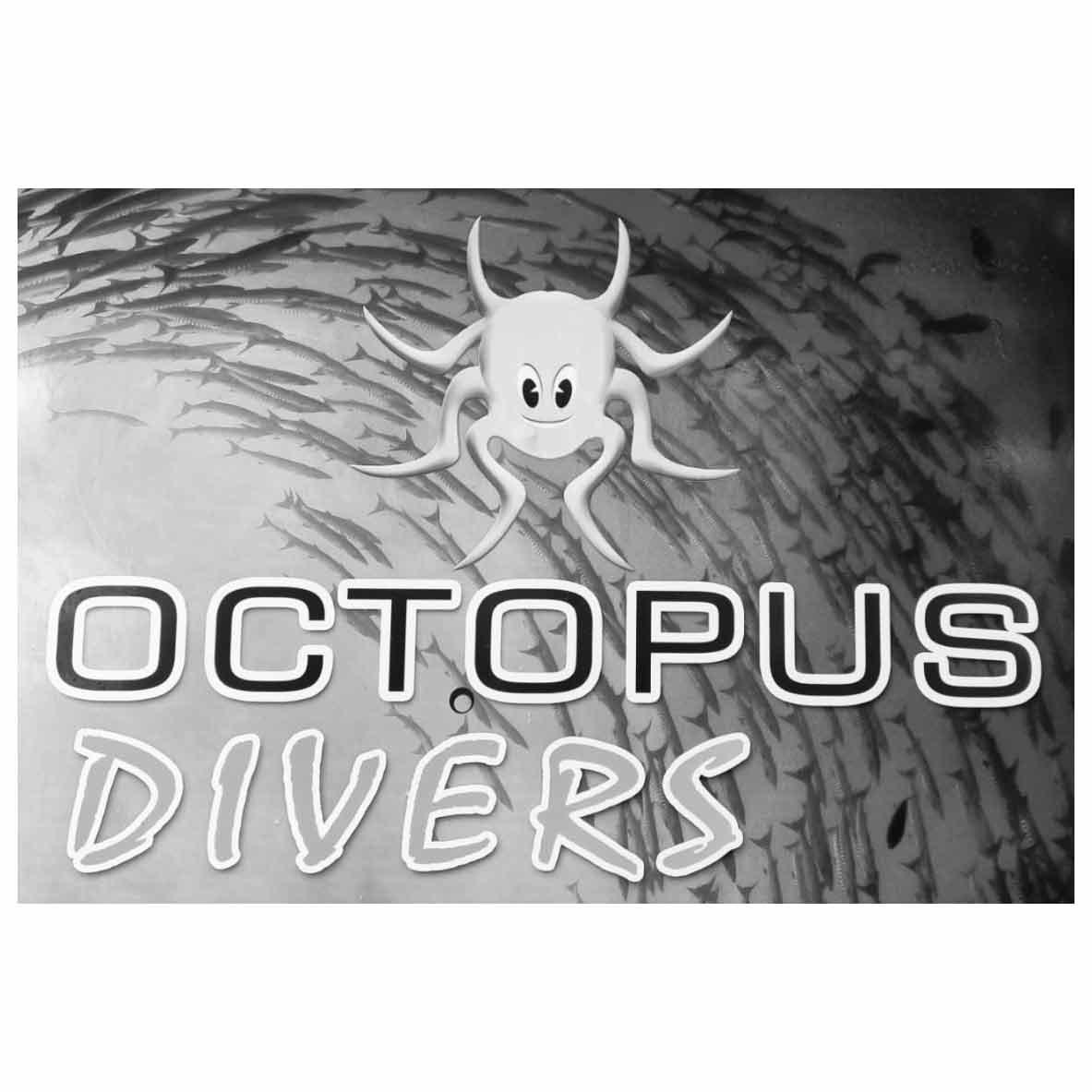 Octopus Divers Dahab Logo
