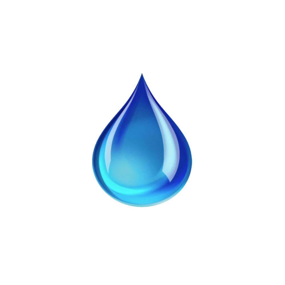 Blue Marine Dive Trawangan Logo