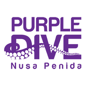Purple Dive Penida Logo